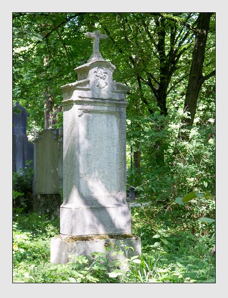 Grab der Familie Bachmayer auf dem Alten Südfriedhof München (Juni 2015)
