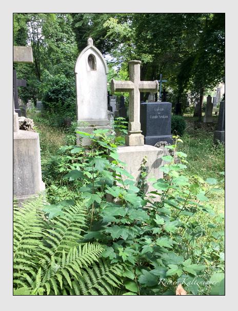 Grab der Familie Selmayer auf dem Alten Südfriedhof München (Oktober 2016)
