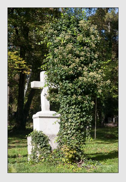 Grab der Familie Schwertschkoff auf dem Alten Südfriedhof München (Oktober 2011)