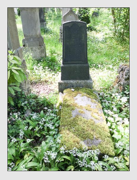 Grab der Familie Berger auf dem Alten Südfriedhof München (Mai 2016)