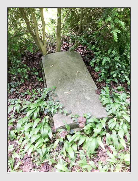 Grab der Familie Feser auf dem Alten Südfriedhof München (Dezember 2017)