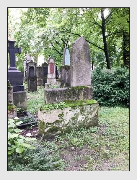 Grab der Familie Graf auf dem Alten Südfriedhof München (Mai 2018)