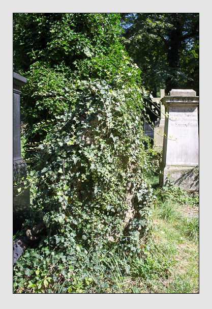 Grab der Familie Höyenmayer auf dem Alten Südfriedhof München (August 2012)