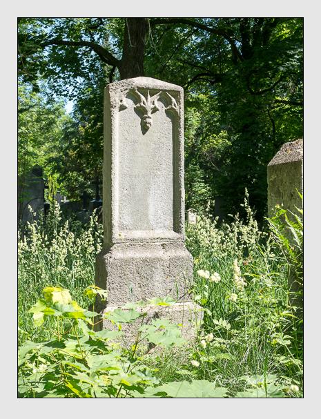 Grab der Familie Wittwer auf dem Alten Südfriedhof München (Juni 2015)
