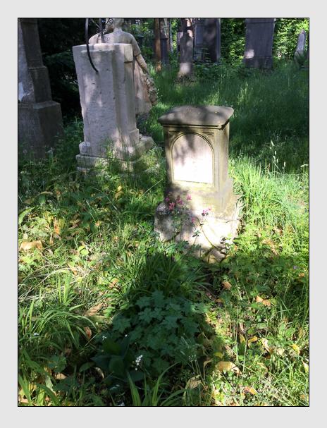 Grab der Familie Rung auf dem Alten Südfriedhof München (Mai 2016)