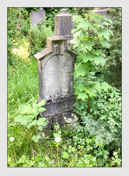 Grab der Familie Steinlein auf dem Alten Südfriedhof München (Mai 2016)