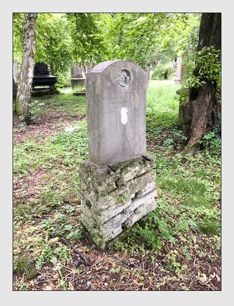 Grab der Familie Rupprecht auf dem Alten Südfriedhof München (Juli 2016)
