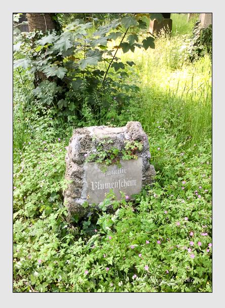 Grab der Familie Blumenschein auf dem Alten Südfriedhof München (Oktober 2016)