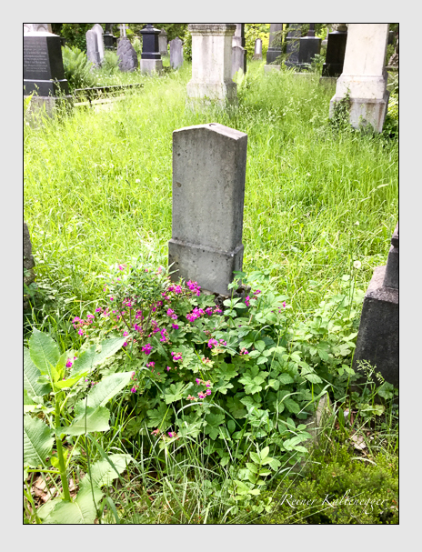 Grab der Familie Selner auf dem Alten Südfriedhof München (Oktober 2016)