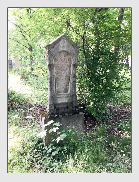 Grab der Familie Stoll auf dem Alten Südfriedhof München (Oktober 2016)