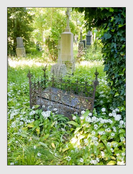 Grab der Familie Bürgerling auf dem Alten Südfriedhof München (Oktober 2016)