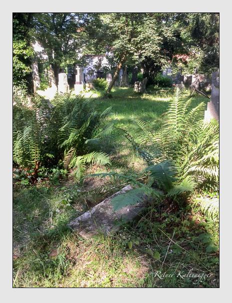 Grab der Familien Weber · Knoller auf dem Alten Südfriedhof München (Juli 2019)