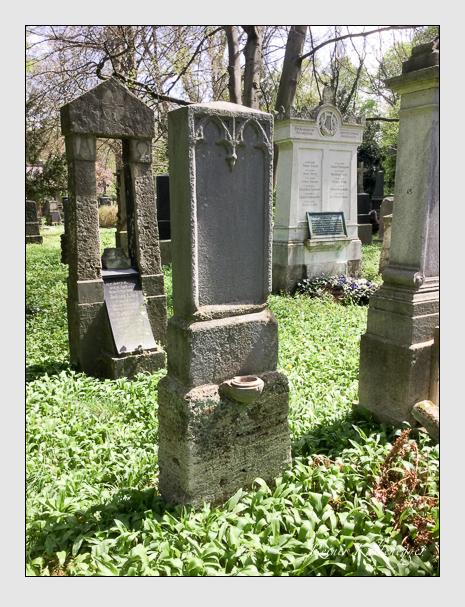 Grab der Familie Kester auf dem Alten Südfriedhof München (April 2020)