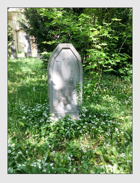 Grab der Familien Herrman · Seelstrang auf dem Alten Südfriedhof München (Mai 2020)