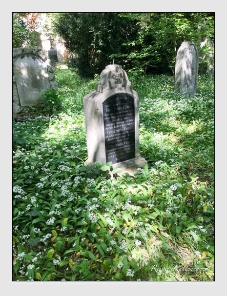 Grab der Familie Ernst auf dem Alten Südfriedhof München (Mai 2020)