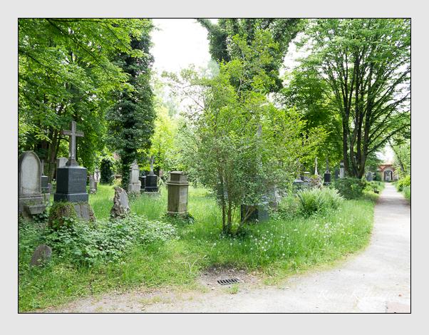 Gräber der Sektion 31 auf dem Alten Südfriedhof München: Westseite (Mai 2020)