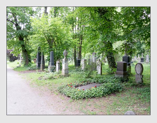 Gräber der Sektion 31 auf dem Alten Südfriedhof München: Ostseite (Mai 2020)