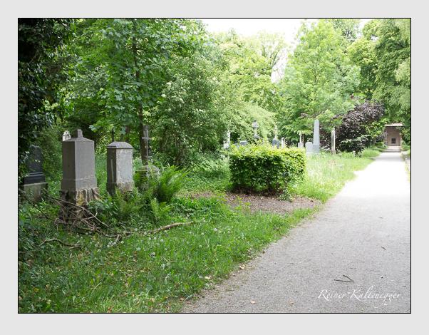 Gräber der Sektion 35 auf dem Alten Südfriedhof München: Ostseite (Mai 2020)