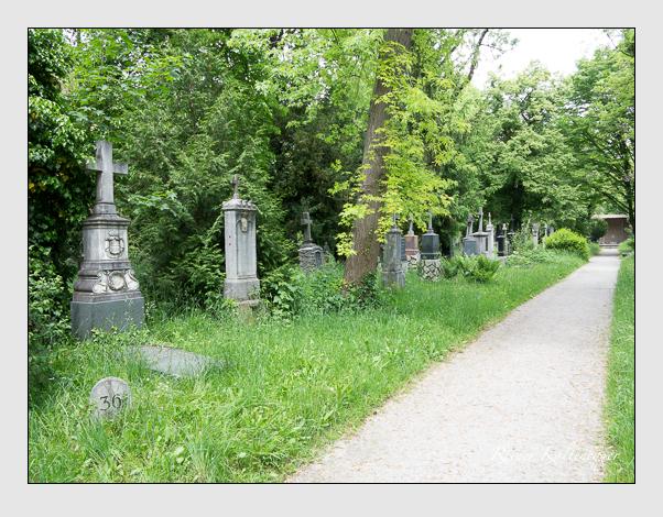 Gräber der Sektion 36 auf dem Alten Südfriedhof München: Ostseite (Mai 2020)