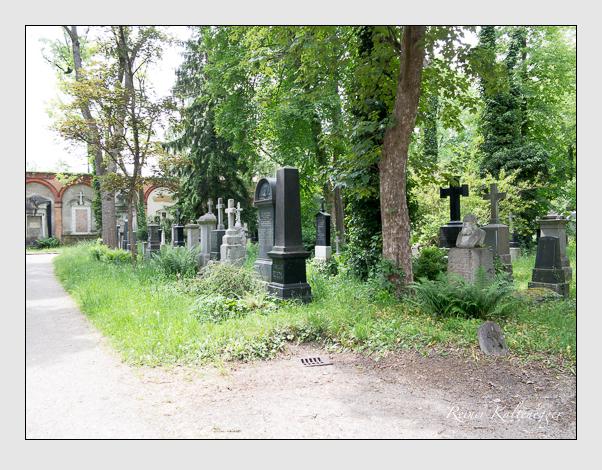 Gräber der Sektion 40 auf dem Alten Südfriedhof München: Ostseite (Mai 2020)