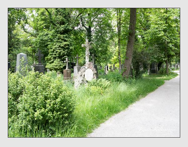 Gräber der Sektion 37 auf dem Alten Südfriedhof München: Ostseite (Mai 2020)