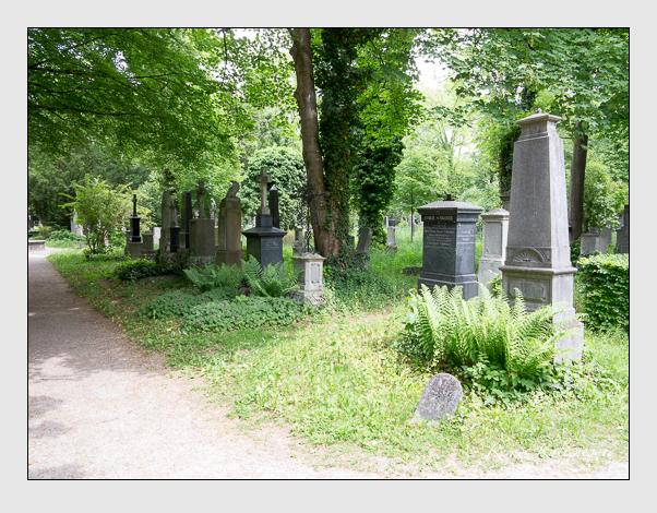 Gräber der Sektion 41 auf dem Alten Südfriedhof München: Westseite (Mai 2020)