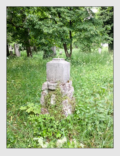 Grab der Familie Wolf auf dem Alten Südfriedhof München (Juni 2020)