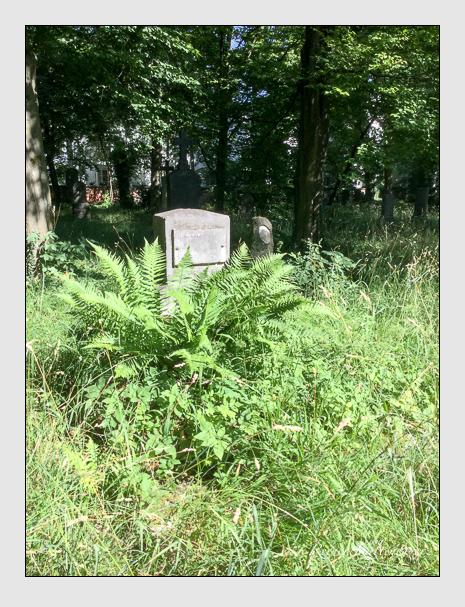 Grab der Familie Bader auf dem Alten Südfriedhof München (Juli 2020)