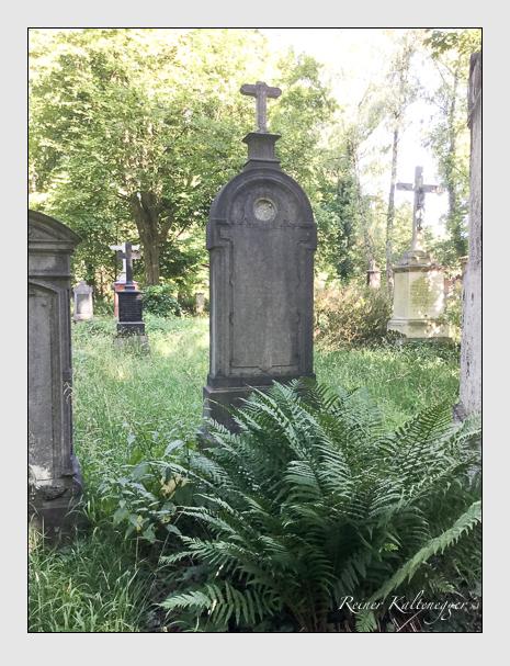 Grab der Familie Rock auf dem Alten Südfriedhof München (Juli 2020)