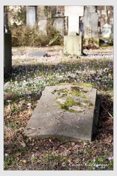 Grab der Familien Haupold · Naumann auf dem Alten Südfriedhof München (Februar 2021)