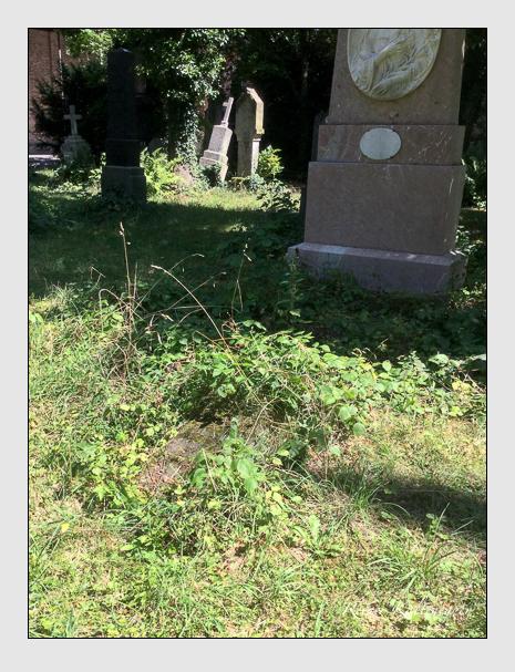 Grab der Familie Brandl auf dem Alten Südfriedhof München (August 2020)