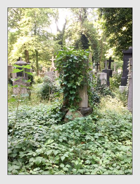 Grab der Familie Würth auf dem Alten Südfriedhof München (August 2020)