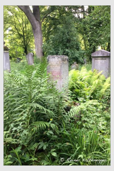 Grab der Familie Veith auf dem Alten Südfriedhof München (Mai 2018)