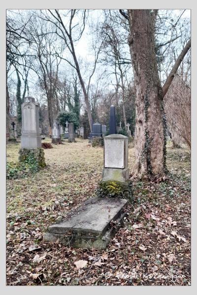 Grab der Familie Müller auf dem Alten Südfriedhof München (Februar 2021)