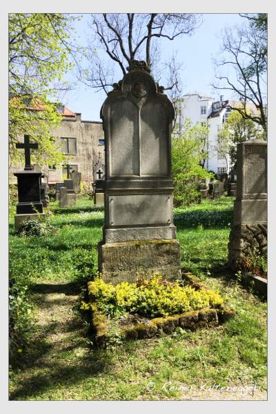 Grab der Familie Werle auf dem Alten Südfriedhof München (Mai 2018)