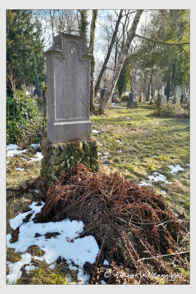 Grab der Familie Anzinger auf dem Alten Südfriedhof München (Januar 2021)